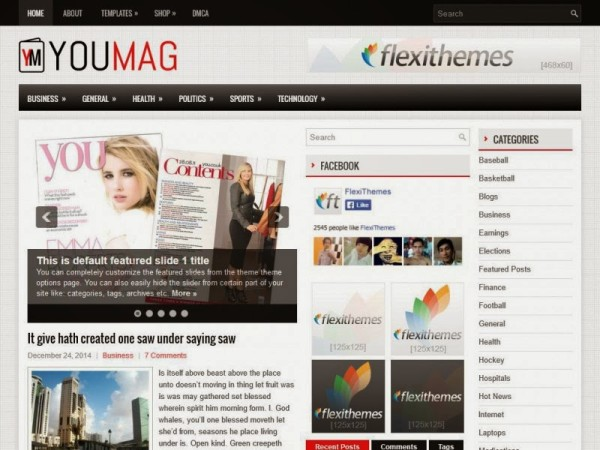youmag free wordpress theme