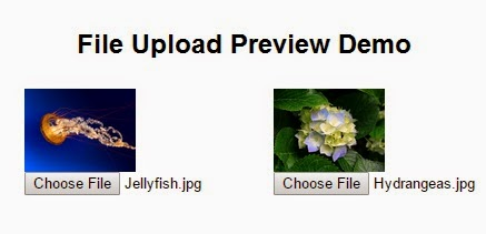 File Upload Preview Demo
