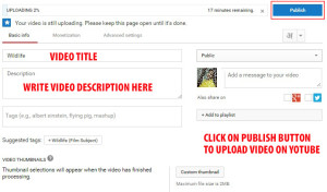 publish video on youtube channel