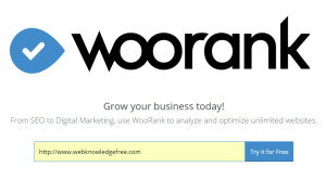 Review Your Website For Free By Woorank SEO Tool