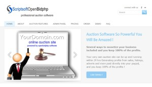 openbidphp software for online auction website